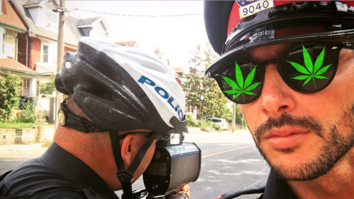 Toronto Cops in Big Trouble for Eating Weed Edibles, Calling Backup on Themselves