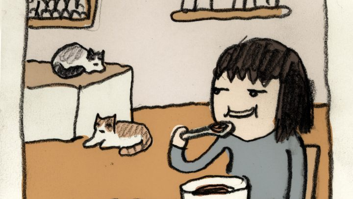 'How to Trick Your Cats,' Today's Comic by Seo Kim