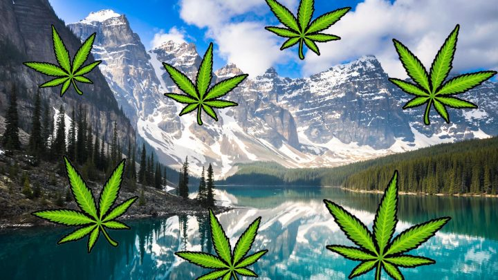 Luxury Weed Tourism Is the Hot New Trend in Canada