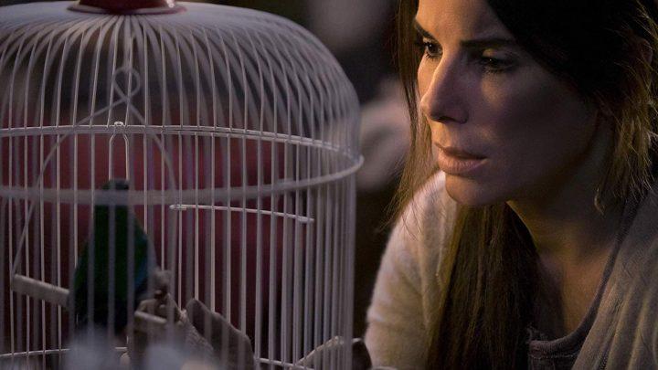 Canada Passed Legislation Condemning 'Bird Box'