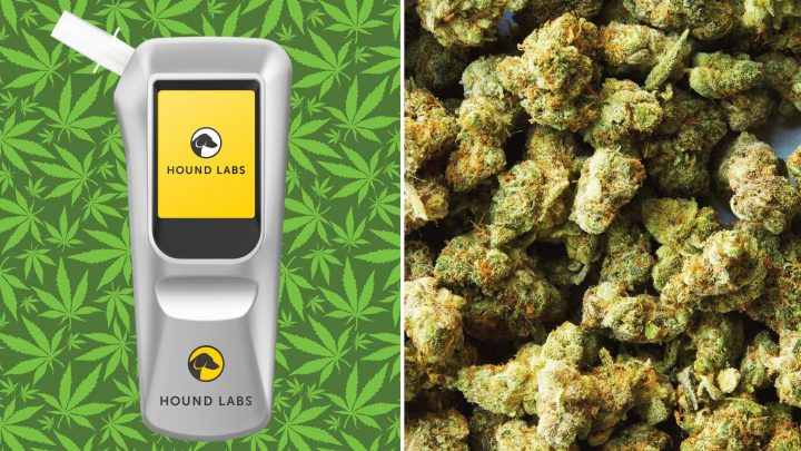This Company Claims It's Created the World's First Weed Breathalyzer