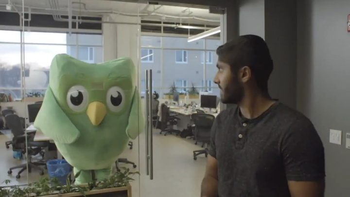 Duolingo's Cute Owl Mascot Is a Ruthless, Terrifying Sociopath with Nothing to Lose