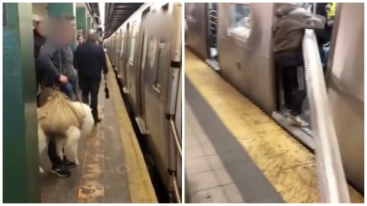 'VICE LIVE' Watches People Bring Ridiculously Large Things on the Subway