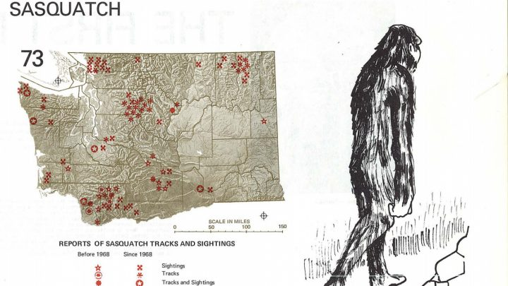 The FBI Has Published Its Cache of Bigfoot Files