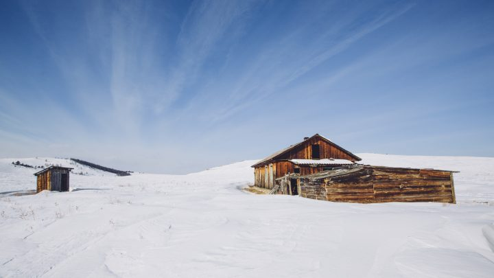 Siberia Could Become More Habitable Due to the Climate Crisis, Scientists Find