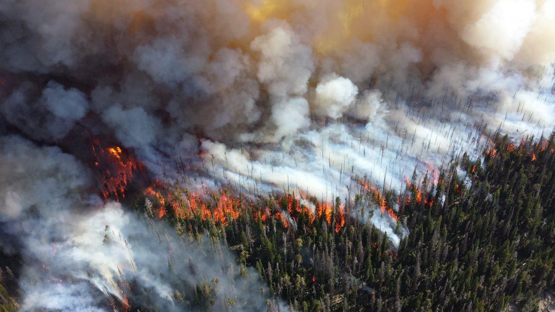 Under Trump, 26% of Climate Change References Have Vanished From .Gov Sites