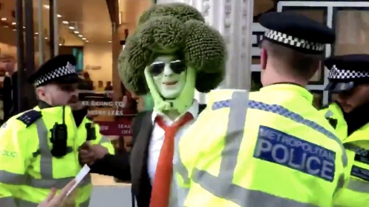 Climate Change Protester Dressed as Broccoli Gets Arrested, Becomes a Hero