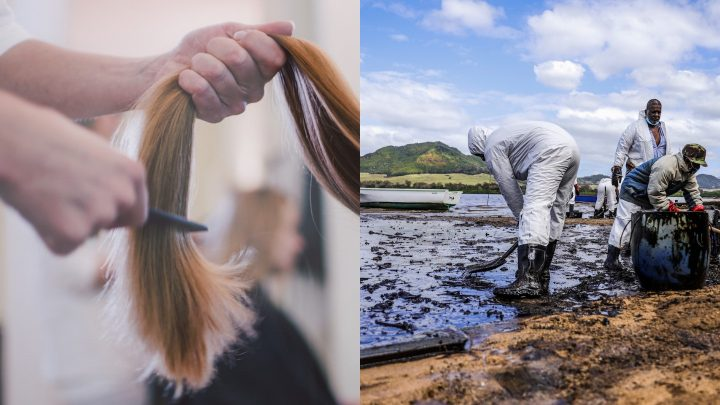 Human Hair is Being Collected to Soak Up an Oil Spill in Mauritius